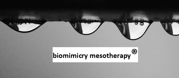biomimicry mesotherapy mesoinstitute peptides hair rejuvenation slimming spots anti aging